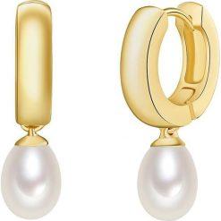 Kolczyki damskie: Pozłacane kolczyki-kreole z perłami słodkowodnymi