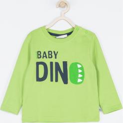 Koszulka. Zielone t-shirty chłopięce z długim rękawem BABY DINO, z napisami, z bawełny. Za 39,90 zł.