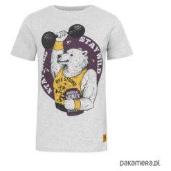 T - shirt Bear. Szare t-shirty męskie Pakamera, m, z bawełny. Za 89,00 zł.
