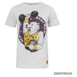 T-shirty męskie: T - shirt Bear