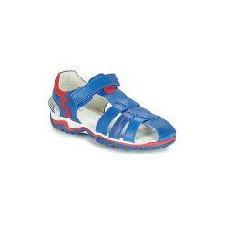Sandały Dziecko  André  LES VAGUES. Niebieskie sandały chłopięce Andre. Za 175,20 zł.