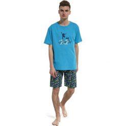 Odzież chłopięca: Piżama chłopięca F&Y 551/26 skate r. 170/S