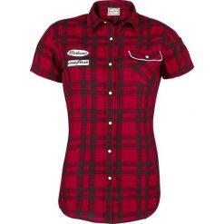 GoodYear Santa Ana Koszula damska czarny/czerwony. Czarne koszule jeansowe damskie marki GoodYear, m, z aplikacjami, klasyczne, z dekoltem na plecach, z krótkim rękawem. Za 121,90 zł.