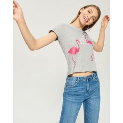 T-shirty damskie: T-shirt z flamingami – Jasny szar