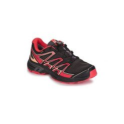 Buty do biegania Salomon  WINGS FLYTE 2 GTX®. Szare buty do biegania damskie marki Salomon. Za 455,20 zł.