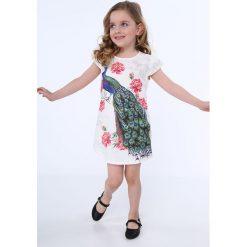 Sukienka z pawiem kremowa NDZ8128. Szare sukienki dziewczęce marki Fasardi. Za 49,00 zł.