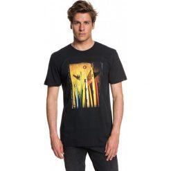 Quiksilver T-Shirt Męski Quivcentralss M Tees kvj0 Czarny L. Czarne t-shirty męskie z nadrukiem marki Quiksilver, l, z bawełny. W wyprzedaży za 89,00 zł.