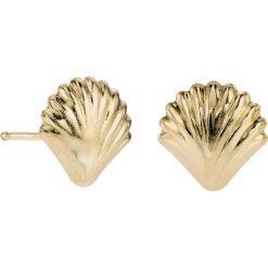 Kolczyki damskie: PROMOCJA Kolczyki Złote – złoto żółte 585