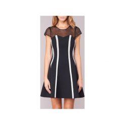 Sukienki krótkie Morgan  RTUS - 2