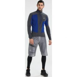 Bejsbolówki męskie: Haglöfs ROCK MID MEN Bluza z polaru cobalt blue/magnetit