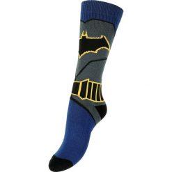 Pończochy i rajstopy: Batman Suit Pończochy wielokolorowy