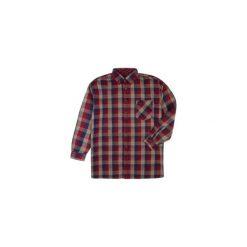 Koszula męska z guzikami, Z KOŁNIERZEM casual. Brązowe koszule męskie jeansowe marki TXM, na jesień, m. Za 19,99 zł.
