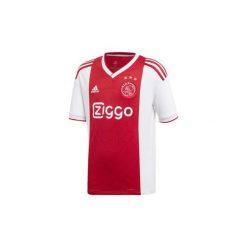 T-shirty z krótkim rękawem Dziecko  adidas  Koszulka podstawowa Ajax Amsterdam. Białe t-shirty chłopięce z krótkim rękawem Adidas. Za 279,00 zł.
