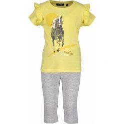 Spodnie dresowe dziewczęce: Blue Seven – Komplet dziecięcy 92-128 cm