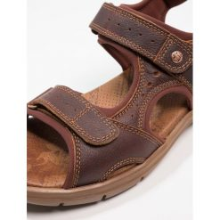 Sandały męskie: Panama Jack SALTON EXPLORER Sandały trekkingowe castano