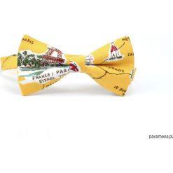 Paris. Żółta mucha z Wieżą Eiffla. Szare muchy męskie marki Mayoral, l, z bawełny, z klasycznym kołnierzykiem. Za 69,00 zł.