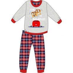 Bielizna chłopięca: Piżama Young Boy 966/79 Breakfast szara r. 164