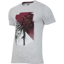 4f Koszulka 1951 szara r. S (H4L17-TSM018). Szare koszulki sportowe męskie marki 4f, l. Za 36,78 zł.