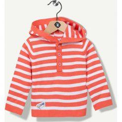 Bluzy niemowlęce: Bluza w kolorze pomarańczowym