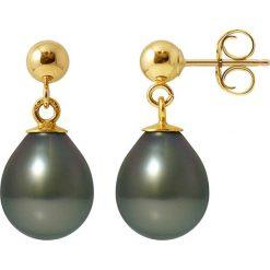 Kolczyki damskie: Złote kolczyki-wkrętki z perłami tahiti