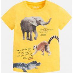 Mayoral - T-shirt dziecięcy 92-134 cm. Żółte t-shirty chłopięce z nadrukiem Mayoral, z bawełny, z okrągłym kołnierzem. Za 64,90 zł.