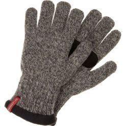 Rękawiczki męskie: Millet Rękawiczki pięciopalcowe grau