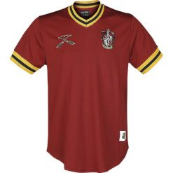 T-shirty męskie: Harry Potter Quidditch - Gryffindor T-Shirt wielokolorowy
