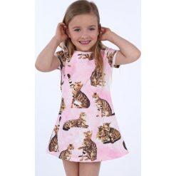 Sukienka dziewczęca w koty różowa NDZ8164. Szare sukienki dziewczęce marki Fasardi. Za 49,00 zł.
