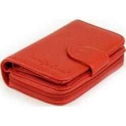 Portfel damski Jenifer Jones - super kolory. Czerwone portfele damskie Jennifer Jones, z materiału. Za 39,90 zł.