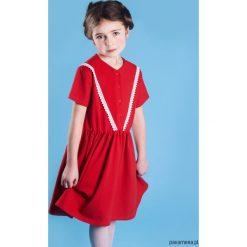 Sukienka KORONKA. Niebieskie sukienki dziewczęce dzianinowe Pakamera, w koronkowe wzory. Za 127,00 zł.