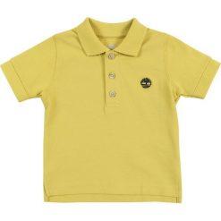 Timberland BABY LAYETTE  Koszulka polo anis. Żółte bluzki dziewczęce bawełniane Timberland. Za 129,00 zł.