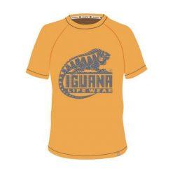 IGUANA Koszulka Męska Lanre Beeswax/Logo Triangle Print r. L. Brązowe koszulki sportowe męskie marki IGUANA, s. Za 54,54 zł.