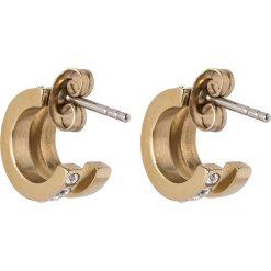 Kolczyki damskie: Dyrberg/Kern LOGUE  Kolczyki shiny goldcoloured