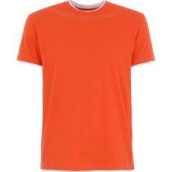 T-shirty męskie: T-shirt męski