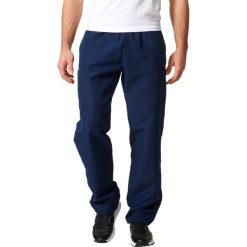 Spodnie dresowe męskie: Spodnie typu jogpant
