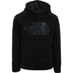Bejsbolówki męskie: The North Face SURGENT Bluza z kapturem black