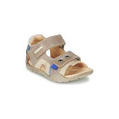 Sandały Dziecko  Babybotte  TRIUMPH. Brązowe sandały chłopięce marki Babybotte. Za 263,20 zł.