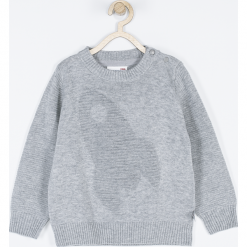 Sweter. Szare swetry chłopięce marki Cosmic, z aplikacjami, z bawełny. Za 69,90 zł.