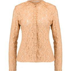 Koszule wiązane damskie: IVY & OAK Koszula vintage rose