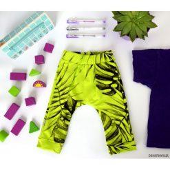Dresy chłopięce: Spodnie dresowe Liście monstera