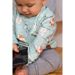 Bluzy dziewczęce: Miętowa bluza dziecięca białe niedźwiadki