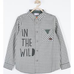 Koszula. Brązowe koszule chłopięce z długim rękawem Wild, z napisami, z bawełny, z kontrastowym kołnierzykiem. Za 69,90 zł.