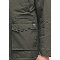 Dickies CURTIS Kurtka zimowa olive green. Szare kurtki męskie zimowe marki Dickies, z dzianiny. Za 509,00 zł.