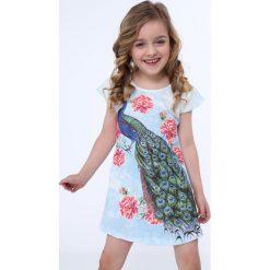 Sukienka z pawiem niebieska NDZ8128. Szare sukienki dziewczęce marki Fasardi. Za 49,00 zł.