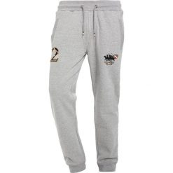Spodnie męskie: Santa Monica HAVERTON Spodnie treningowe grey marl
