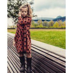 Sukienka w grochy. Brązowe sukienki dziewczęce z falbanami Pakamera, na jesień, w grochy. Za 99,00 zł.