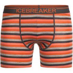 Bokserki męskie: Icebreaker Mens Anatomica Boxers Copper/Ebony/Stripe L