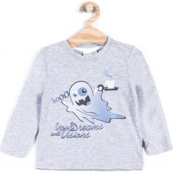 Koszulka. Szare t-shirty chłopięce z długim rękawem Halloween, z bawełny. Za 24,90 zł.