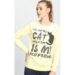 Bluzy damskie: Żółta Bluza Entire Cat