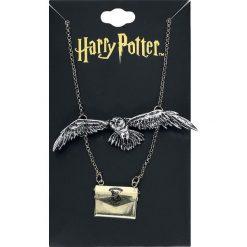 Harry Potter Hedwig und Brief Naszyjnik srebrny. Szare naszyjniki damskie marki Harry Potter, srebrne. Za 62,90 zł.